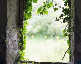 Irish Window Photography - Abandoned Cottage Fine Art Photograph - County Fermanagh - Northern Ireland