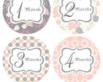 Monthly Baby Stickers Baby Monthly Stickers Month Stickers Pink Grey Floral Sticker Monthly Bodysuit Sticker Baby Shower Gift Photo Prop Mya