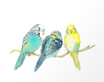 Budgie family - budgie watercolor - budgie print -digital download - parakeets