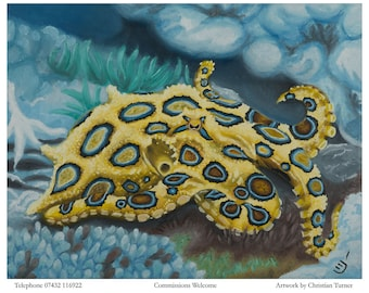 Blue Ringed Octopus - original oil painting on box canvas by Christian Turner