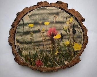 Colorado art, Colorado gift, wildflowers, wildflower art, wood wall art, photo transfer to wood, rustic decor, cabin decor, lodge decor
