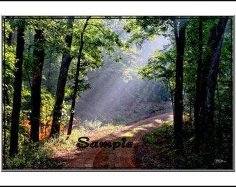 Brighter Road Ahead Fine Art Photo Card