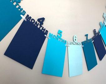 12 Month Photo Banner / Blue Birthday Banner / First Birthday Photo Banner / Photo Banner / One Year Photo Banner / Monthly Photo Banner