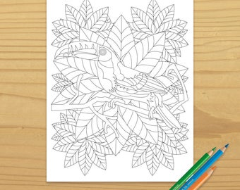 Toucan Coloring Page, Bird Coloring Page, Jungle Coloring Page, Leaf Coloring Page, Rainforest Coloring Page, Digital Download