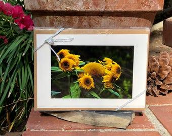 Point Defiance Garden Flowers, Blank Card Set