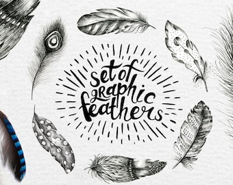 Hand Drawn graphic feather and feathers pattern. Paper for scrapbooking