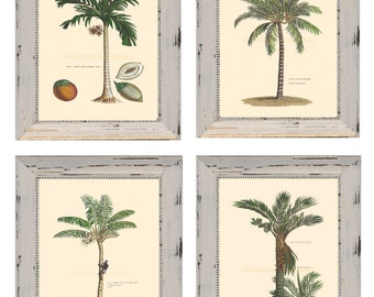 Palm Trees. Set of Four Palm Tree Prints Multibuy Discount 8 x 10 Coastal Living Palm Tree Living Room Wall Decor. Watercolour Paper Prints