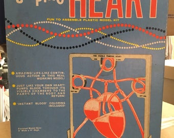 1962 the Visible Pumping Heart plastic model kit in great looking box- original Valentine's Day gift