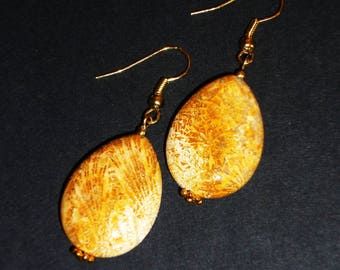 Fossil coral drop earrings