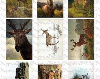 Deer Digital Download Collage Sheet 3.5 x 2.25 Inch