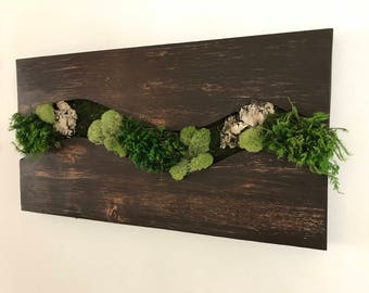 "17.5"" x 9"" Preserve moss wall decor"