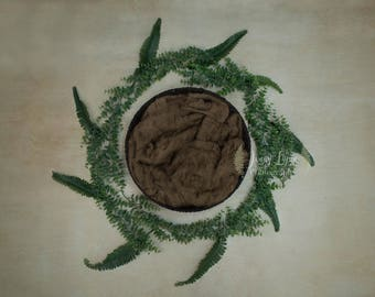 Newborn Backdrop Leaves and Ferns Brown Blanket