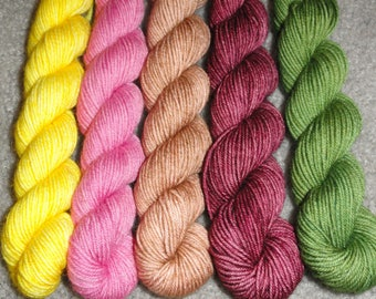 Sara's Lily Superwash Merino/Nylon Sock Mini Skein Set