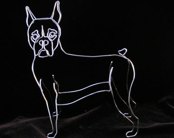 Wire Dog Portrait, Face turned towards the viewer.