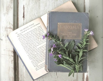"Book Photography, Book Art, Shabby Cottage Chic Art, Vintage Book Print, Library Office Art, Old Book Rustic Farmhouse Decor- ""Journeys"""