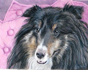 Shetland Sheepdog Art, Custom Pet Portrait Drawing in Colored Pencil, Sheltie or any breed, Gift for Him, Gift for Her, Birthday Gift, Art