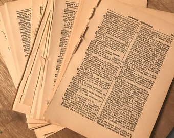 1940s German English Dictionary Pages Lot of 50 Ephemera Scrapbook Collage Junk Journal Upcycle