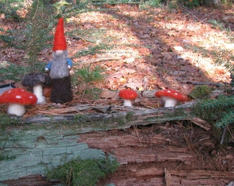 Needle felted Forest Gnome, Waldorf inspired, Art doll, Needle felted wool doll.