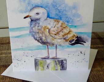 Sea Gull Greetings Card