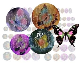 digital images to print flight of butterflies