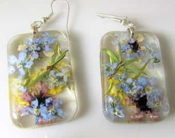 Forget Me Not,  Real Flower Earrings,   Pressed Flower Jewelry, Resin (3087)