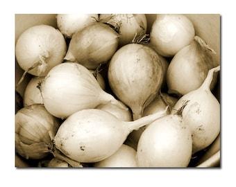 Kitchen Wall Art Onions Vegetable Food Print Sepia Brown