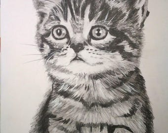 Kitten Original Handmade Graphite pencil Drawing Little Cat fine art A4 size pet drawing