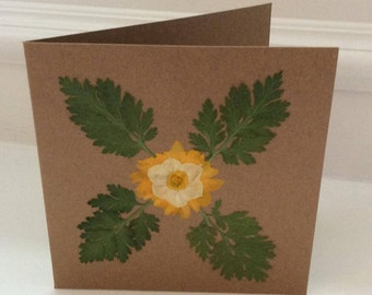 Pressed Flower Greetings Card, Unique, Natural, Blank Inside, Suitable for all Ocassions