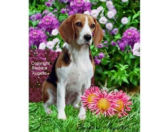 Beagle Flag, Beagle Gift, Beagle Art, Beagle
