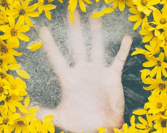 Hand Beneath Flowers Print | Reaching Hope Break Free Restrained Struggle Stuck Yellow Flowers Ice Photography