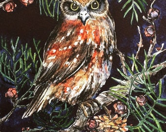 Owl Boobook Night Original Watercolour Art By Monica Reeve My Daily Draw OOAK  Gift Investment Tasmania Forest Mopoke Native Bird