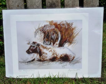 Holly and Lance Giclee Print - Longhorn Cattle