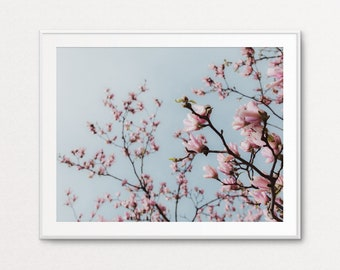 Pink Magnolias, Paris Wall Art, Paris Print, Paris Decor, Floral Photo, Paris Bedroom Decor, Pink Wall Art