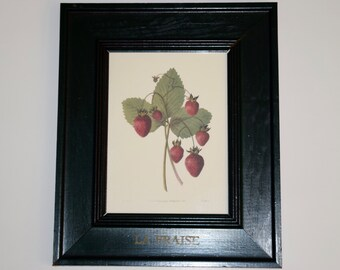 Strawberry print, La Fraise, French Country Design, hand painted frame