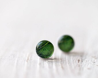 Green earring studs, Green Leaf earrings stud, Mothers day gift, nature lover gift, Tiny earrings studs, Gift for mom, Green leaves earrings