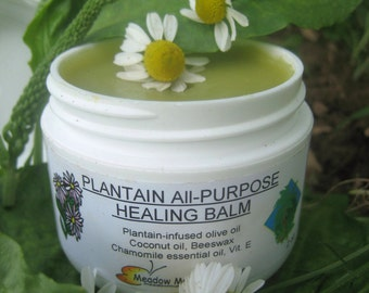 Herbal Balm, Coconut oil Salve, Plantain & Chamomile Healing Balm, Baby bottom, Chapped hands, Elderly care, Pets, Bug and Bee bites