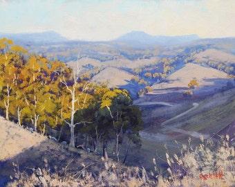 Australian LANDSCAPE Oil PAINTING Original by award winning artist Graham Gercken