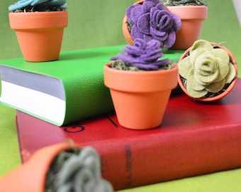 Handmade Felt Succulent