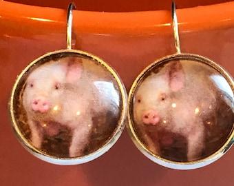 Pig cabochon earrings - 16mm