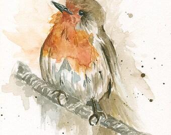 Robin watercolor art
