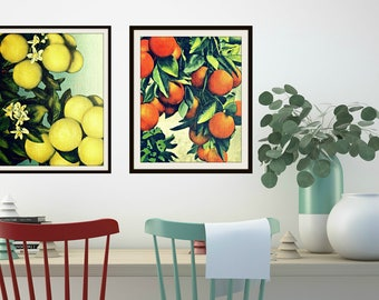 Grapefruit Oranges Art, Foodie Gift, Mom Gift from Son, from Daughter, Mid Century Fruit Print Vintage Botanical Art Food Photography