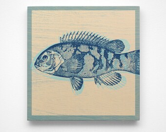 Coastal Art- Saltwater Fish Gifts- Blackfish Art Block- Beach Decor- Beach Art- Prints for Bathroom- Coastal Gifts- Beach Gifts