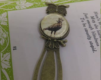A Little Bird Told Me - bronze owl 20mm cabochon bookmark with crowned raven bird
