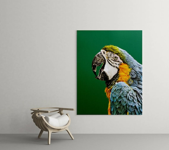 Macaw Parrot Print Tropical Photo Parrot Wall Art Emerald Prints Tropical Bird Print Parrot Photo Print Modern Tropical Decor Bird Art & Macaw Parrot Print Tropical Photo Parrot Wall Art Emerald