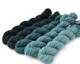 Teaching Assistant - GRADIENT KIT, contains FIVE Hand Dyed Fingering Nonsuperwash Merino Mini Skeins