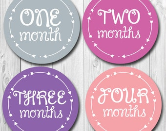 Baby Monthly Sticker, Arrows and Hearts, Boy or Girl, Monthly Photo Stickers for Baby, Baby Shower Gift, Milestone Stickers, Months 1-12