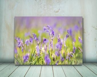 Bluebells photograph, Flower Photography Print, Flower Print, Flower Art (Bluebells in Bloom) - Sell UK/USA and Australia