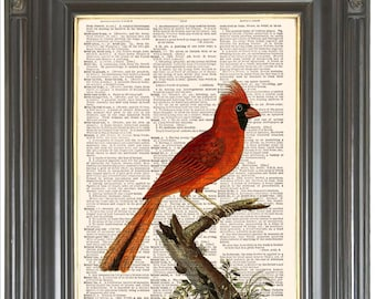 Red cardinal bird digital print on dictionary page Dictionary print Remembrance art wall decor Sheet music page Home decor 765