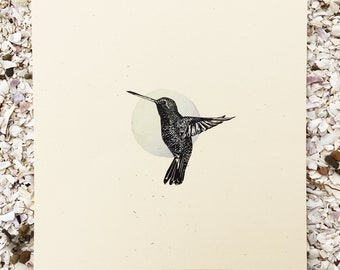 Hummingbird - Bird Series