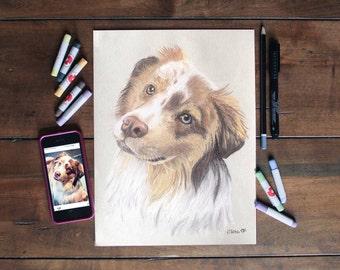 Custom pet portrait. Pastels. Original. Your cat/dog/pet